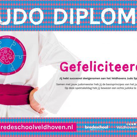 Veldhovens Judo Spektakel